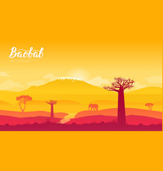 Baobab tree in namibia africa land page vector