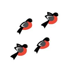 Bullfinch bird vector