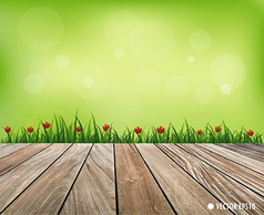 Fresh spring grass background vector image