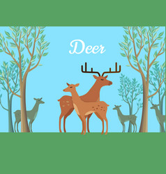 Funny pair of deer vector