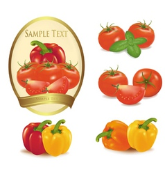 gold label with vegetables vector image
