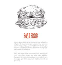 hamburger or cheeseburger sketch fast food poster vector image
