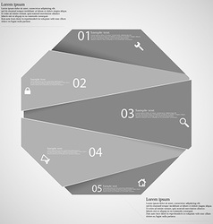 Infographic template with grey octagon randomly vector image