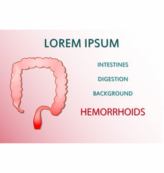 Intestine bowel hemorrhoids vector