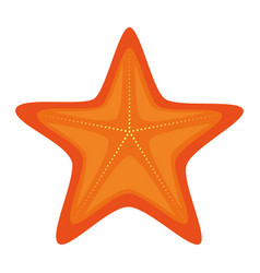 starfish summer isolated icon vector image vector image