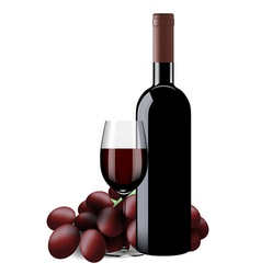 Bottle glass of wine and grapes isolated vector image vector image