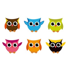 Cute Collection of Bright Owls vector image