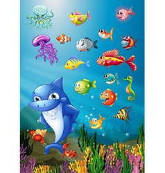 Shark and fish swimming under the sea vector image