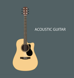Acoustic guitars isolated vector