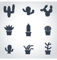 Black cactus icon set vector