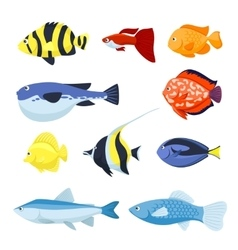 Fish set underwater and aquarium fishes vector
