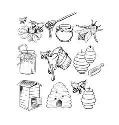 Honey sketches set bee hive honey jar barrel vector