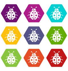 ladybug icons set 9 vector image