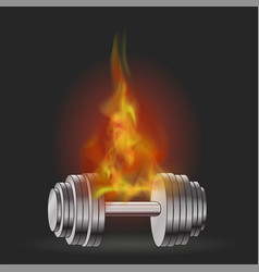metallic dumbell and fire flame vector image