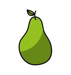 Pear fresh fruit drawing icon vector