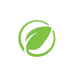 Round green leaf icon logo vector