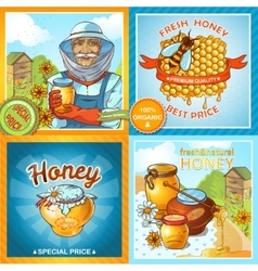 Set Of Honey Compositions vector image