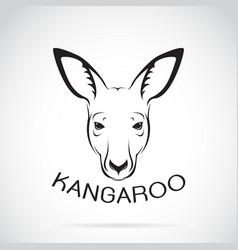 kangaroo head on white background wild animals vector image