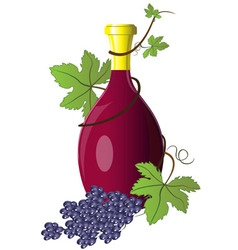 Bottle of wine twined with grape vine vector