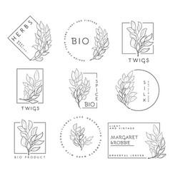 et floral design elements vector image