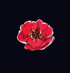 Poppy flower tattoo vector