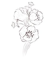 Poppy Lineart2 vector image