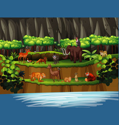 Scene with many animals river vector