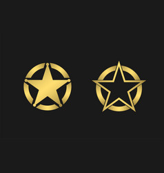 star signs vector image
