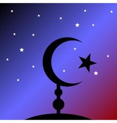 Symbol of Islam at night vector image