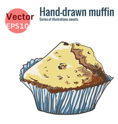 hand-drawn muffin isolated on a white background vector image vector image