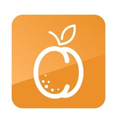 Apricot outline icon Fruit vector