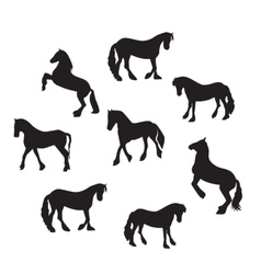 Black Horse Silhouette Set vector