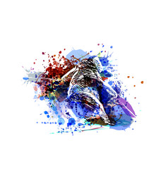 color of a skier vector image