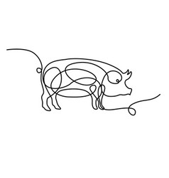 Continuous one line drawing pig vector