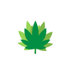 marijuana leaf logo icon graphic design template vector image