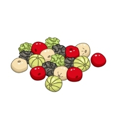 Pepper colored botanical vector