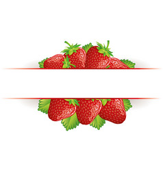 Strawberry background1 vector