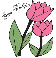 Two Tulips vector