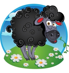 Black dark sheep with blade of grass on color vector