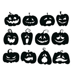 set pumpkins collection pumpkin faces vector image