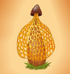 yellow mushroom vector image