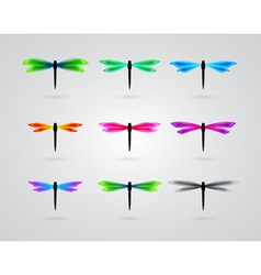 collection of different color butterfly vector image vector image