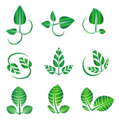 abstract green leaf set organic icons vector image vector image