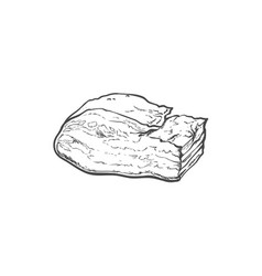 sketch lard meat isolated vector image
