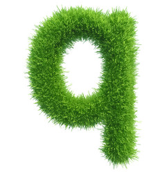 small grass letter q on white background vector image vector image
