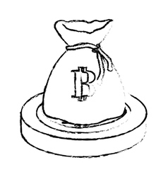 botcoin digital cash symbol in the bag vector image