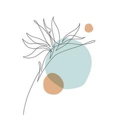 Elegant continuous line drawing minimal art vector