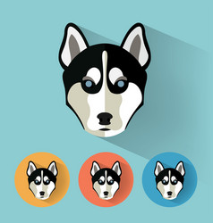 husky portrait with flat design vector image