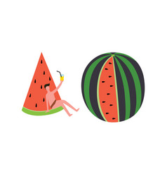 summer party set with man and watermelons flat vector image