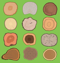 wood slice texture wooden tree life age vector image